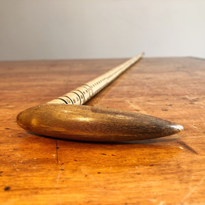 Horn Handle of Rare Shark Spine Cane
