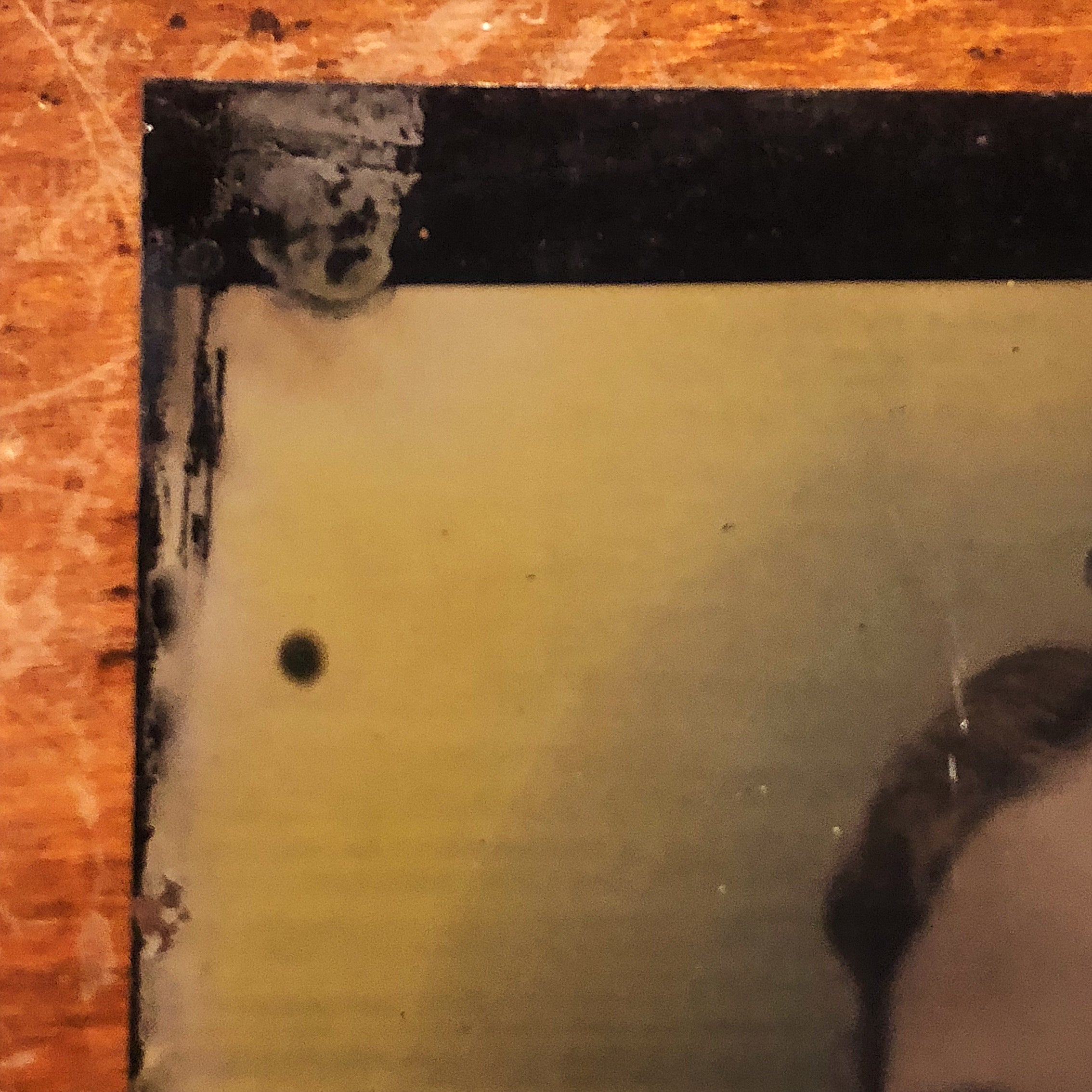 Antique Tintype of Woman with Creepy Hand Painted Eyeballs