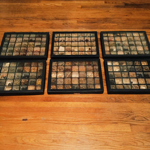Rare Apothecary Pharmaceutical Trays with Contents - 1920s - Set of 6 - Old Medicinal and Herbal Roots - Antique Apothecary Educational