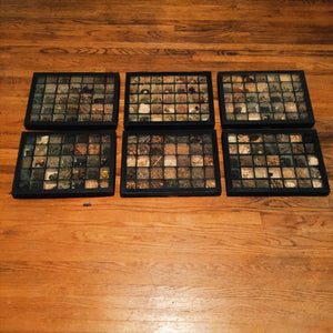 Apothecary Pharmaceutical Trays for Sale with Contents - 1920s - Set of 6 - Old Medicinal and Herbal Roots - Antique Apothecary Educational