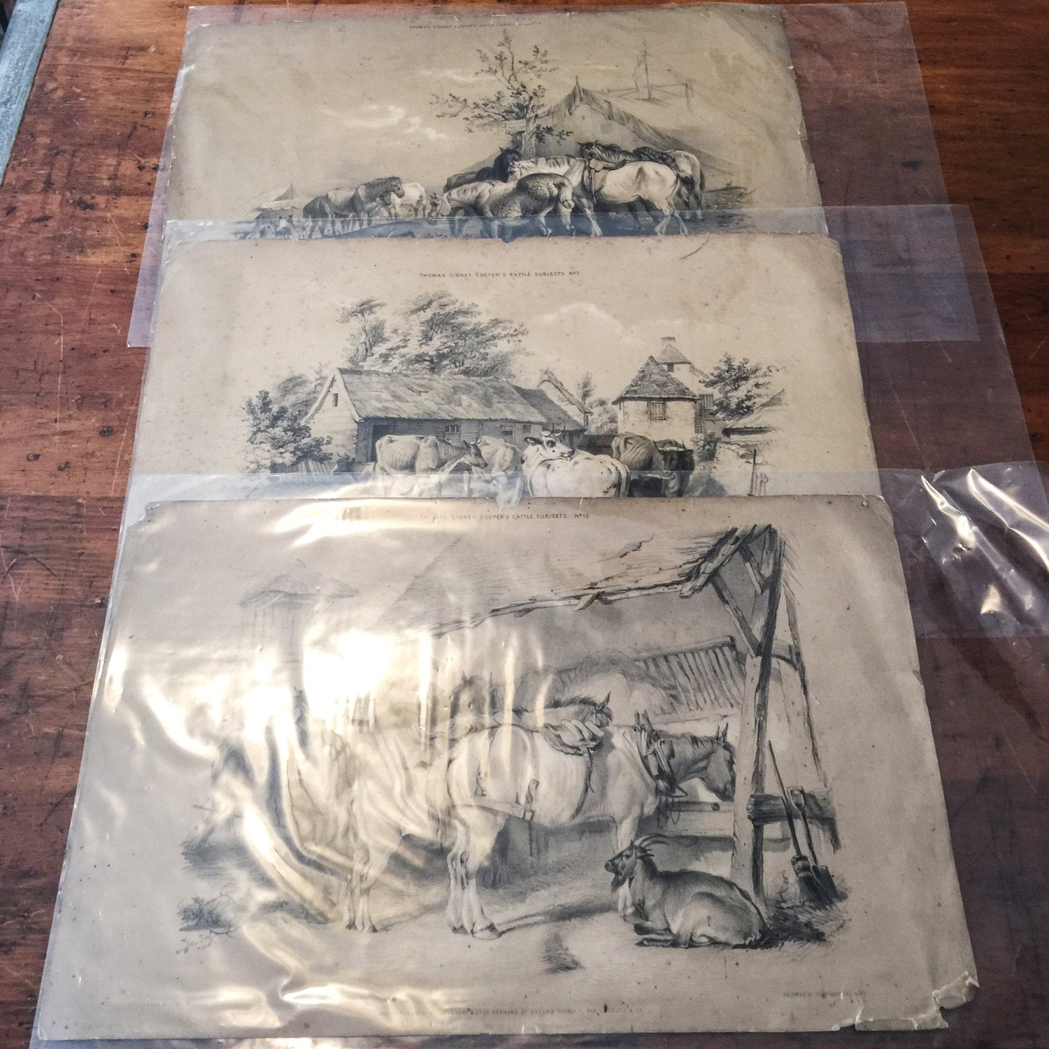 Thomas Sidney Cooper Lithographs (3) - Cattle Subjects - 1845 - J. West Giles - London - Rare - British Lithographs - British Prints
