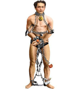 Harry Houdini Greeting Card with Sticker Quotes