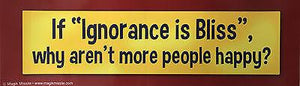 Fun-Bumper Sticker-If ignorance is Bliss why aren't more people happy? - Petals and Postings