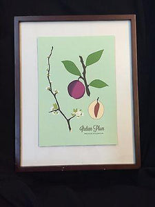 "Snow and Graham Art Print - Plum - 7.5"" x 10.5"" - Petals and Postings"