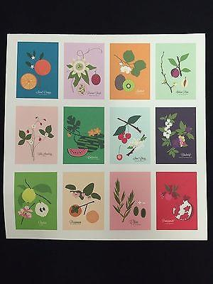 Snow and Graham Art Print - Fruits - 7.5