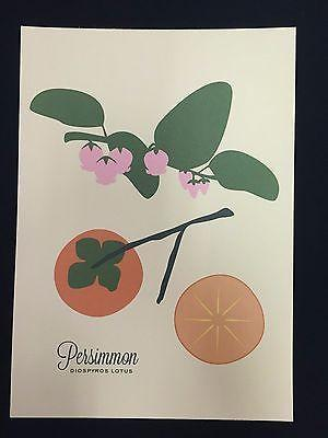 Snow and Graham Art Print - Persimmon- 7.5