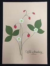 "Load image into Gallery viewer, Snow and Graham Art Print - Wild Strawberry - 7.5"" x 10.5"" - Petals and Postings"