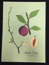 "Load image into Gallery viewer, Snow and Graham Art Print - Plum - 7.5"" x 10.5"" - Petals and Postings"