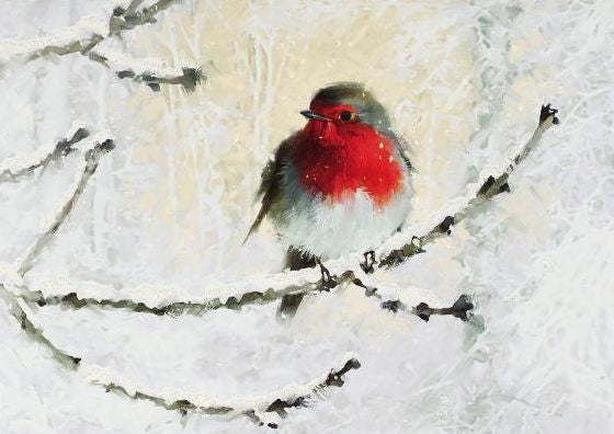 Peter Pauper Press English Robin in Winter Deluxe Holiday Cards