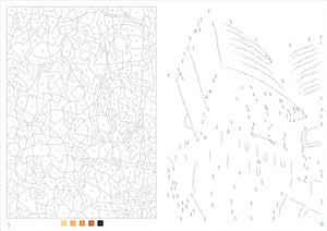 Peter Pauper Press Mystery Illustrations to Unveil Color-by-Number and Dot-to-Dot Book
