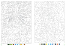 Load image into Gallery viewer, Peter Pauper Press Mystery Illustrations to Unveil Color-by-Number and Dot-to-Dot Book