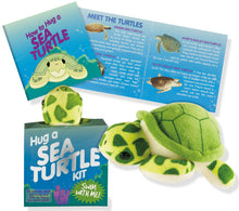 Load image into Gallery viewer, Peter Pauper Press Hug a Sea Turtle Kit