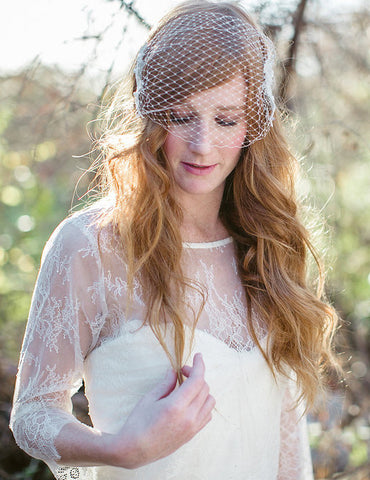 """Ivy"" Birdcage Veil with Lace Detail"