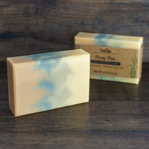 Citrus Pine Soap with Red Moroccan Clay and Cambrian Blue Clay