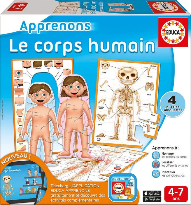 Educa   - Let's Learn The Human Body