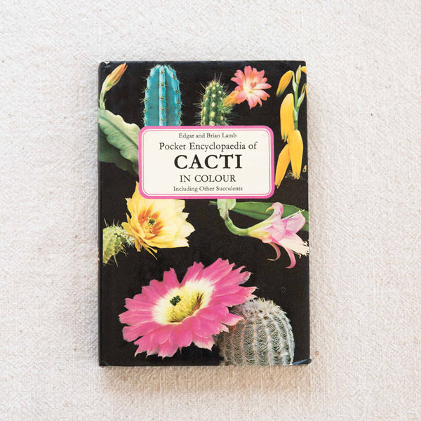Cacti In Colour