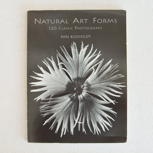 Natural Art Forms