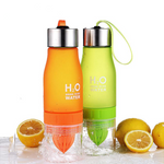 H20 Fruit Infusion Water Bottle - Everlyfave