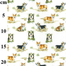 Corgi Dogs design 100% Cotton Fabric, 60 inches wide (150cm) sold per  Half  Metre ~