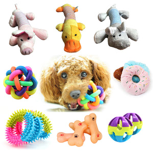 1pcs Small Dog Squeak Toys