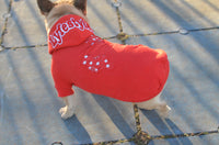 Red Bandana Lyfestyle Dog Hoody