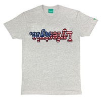 Stars & Stripes Lyfestyle Tees
