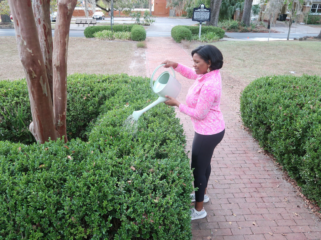 Alexandria Washington watering bush