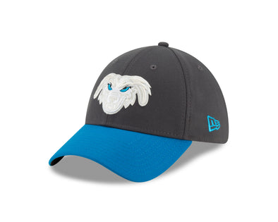 Lake Elsinore Storm Cadejos Flex Fit - Blue/Grey