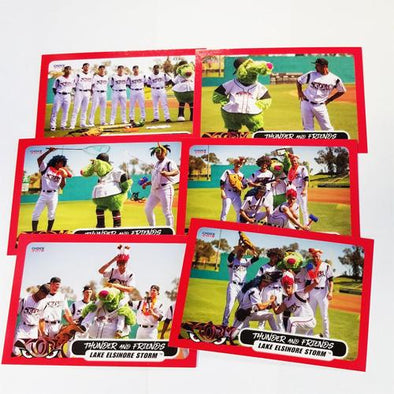Lake Elsinore Storm Thunder and Friends Team Card Set