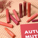[INNISFREE] Vivid Cotton Stick 2g - BuyK.KR