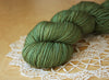Sportif / Worsted Weight / Sherwood / Hand Dyed Yarn / Ready to Ship