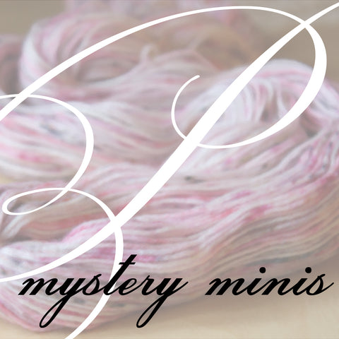 Mystery Mini Skeins / 420 Yards / Hand Dyed Winter Speckled Rainbow MCN Fingering Weight