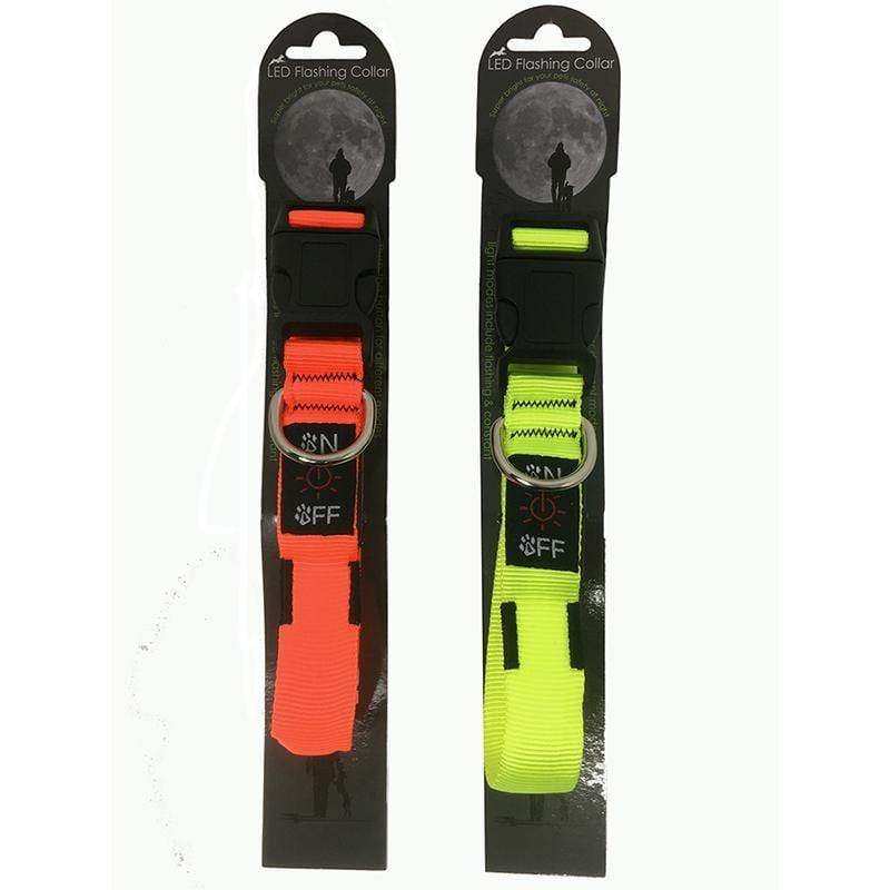Miro and Makauri LED Flashing Collar