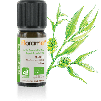 FLORAME Organic Essential Oil - Tea Tree 有機茶樹精油 [10ml] - MINT Organics