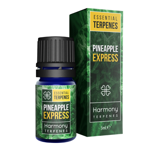Terpènes - Pineapple Express 5ml - Hashtag CBD Products