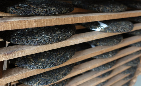 pu-erh teas are aged in a temperature and humidity controlled environment
