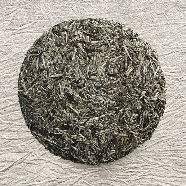 Mansa Tea | Pearl White | Fuding Silver Needle | high quality aged white tea from Fujian province - image of aged white tea cake
