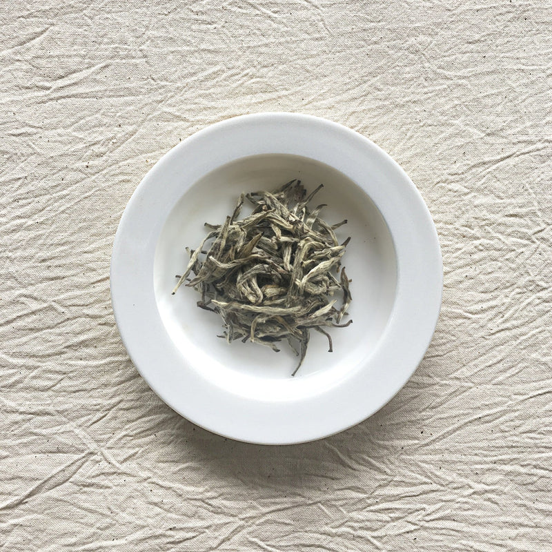 Mansa Tea | Pearl White | Fuding Silver Needle | high quality aged white tea from Fujian province - image of aged white tea on a plate