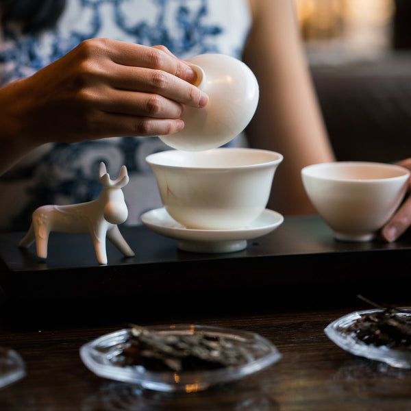 Mansa Tea | Learn how to brew with aged tea and pu'er tea in gongfu style and Mansa's brewing technique