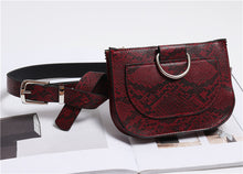 Load image into Gallery viewer, Serpentine Saddle waist Bag