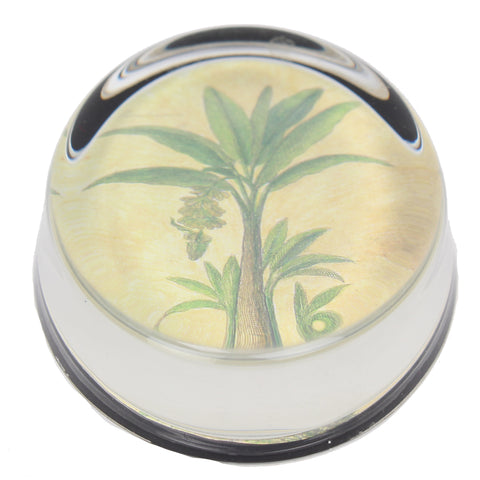 Palm Tree Paperweight