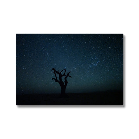 Craig Kolesky_Namibian Nights Canvas