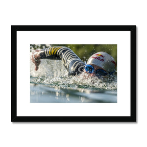 Olaf Pignataro - Swimming Framed & Mounted Print