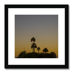 Los Angeles Palms_2 Framed & Mounted Print