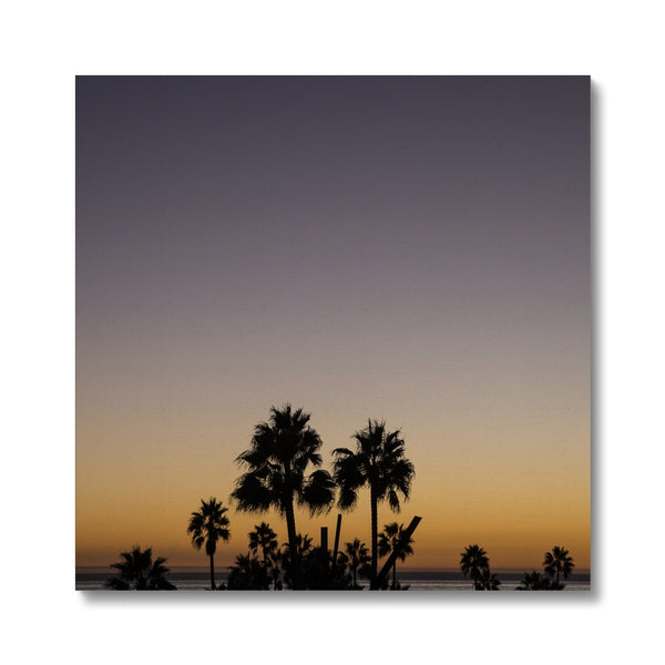 Los Angeles Palms_3 Canvas