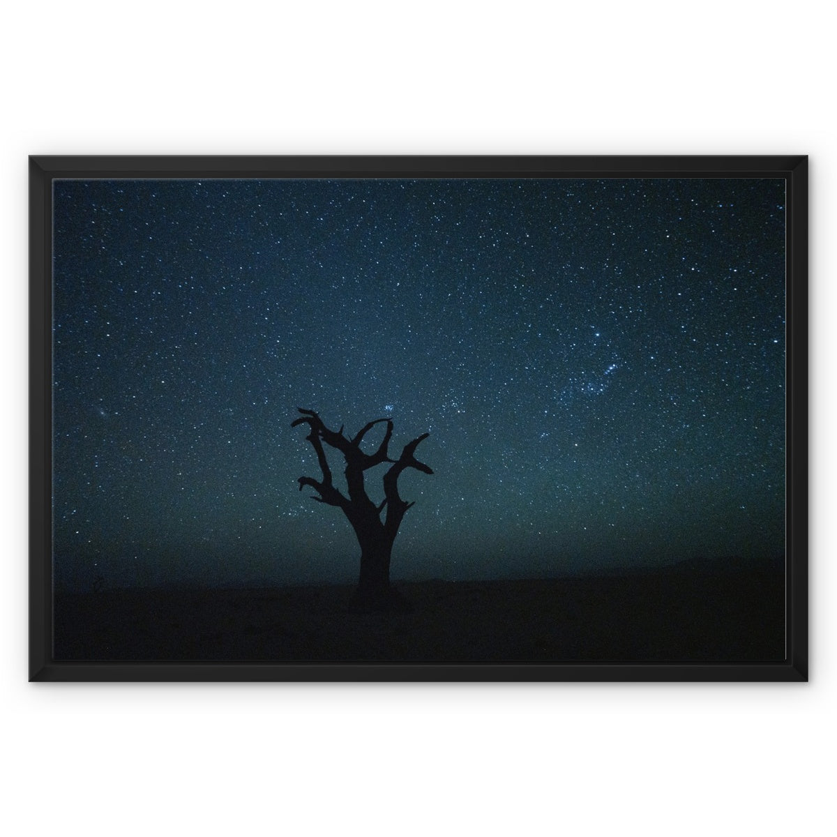 Craig Kolesky_Namibian Nights Framed Canvas