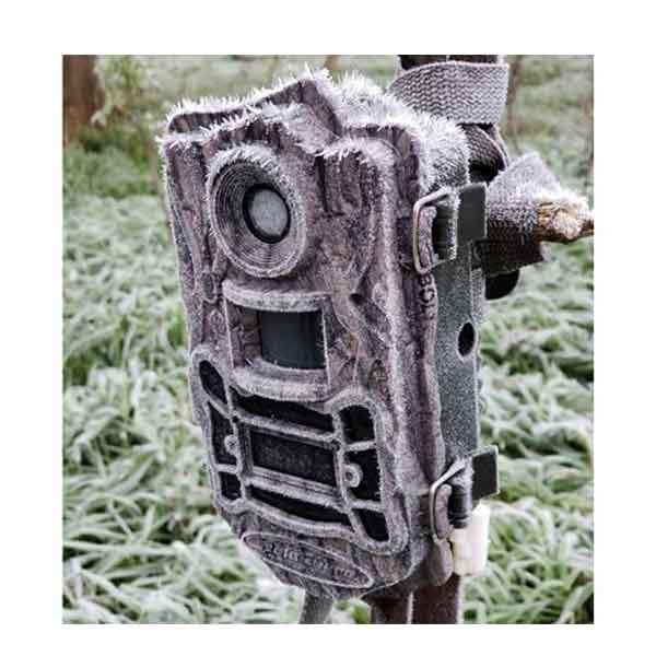 Bolyguard BG960-K24W Black Flash Wide Angle Lens Camera Trail Cameras Scoutguard