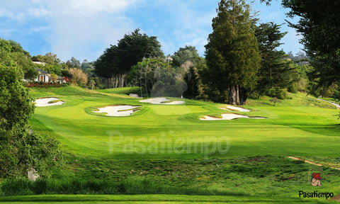 Professional Photograph of Hole #5