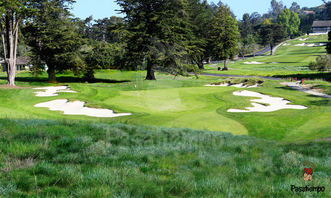 Professional Photograph of Hole #8