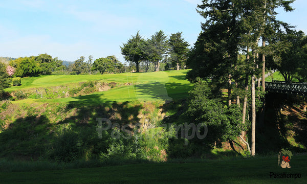 Professional Photograph of Hole #10
